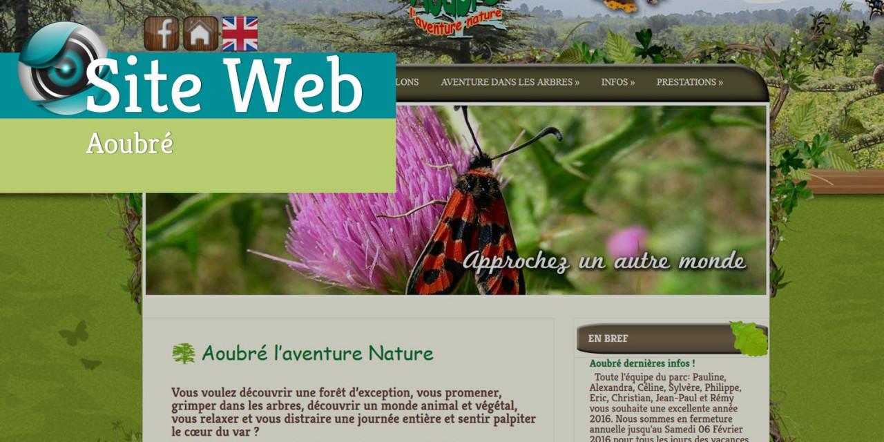 Site Web-Aoubré